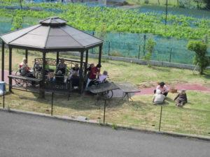 リハビリ公園