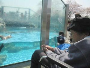 東武動物公園へ遠足
